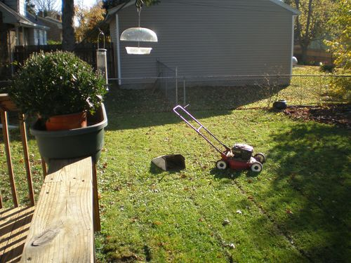 Cutting grass during the last week of October