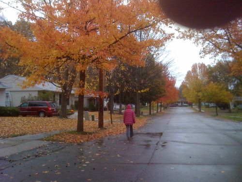 Trees in our neighborhood are holding their color.