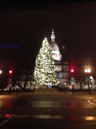 The State Christmas tree
