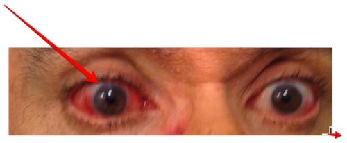 My eyes in 2013